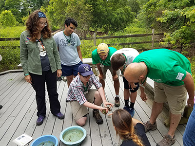 Counselors Learning How to Hold a Frog